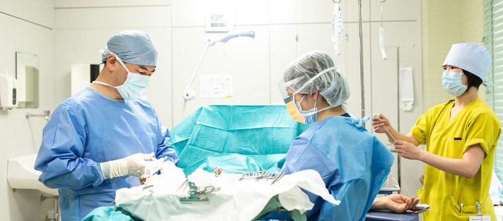 日本では年間およそ30万件(そのうち16万件が成人)の手術が行われています。